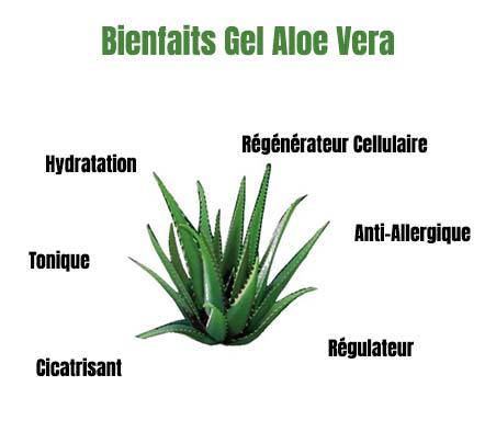 bienfaits Gel Aloe Vera