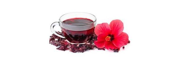 Propriétés et vertus médicinales de la fleur d'hibiscus