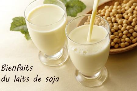 Propriétées et vertus médicinales du lait de soja