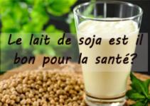 Bienfaits et risques du lait de soja pour la santé