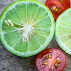 tomate ou citron